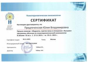 Сертификат_Жадность, чувство вины и отношения с Высшимs