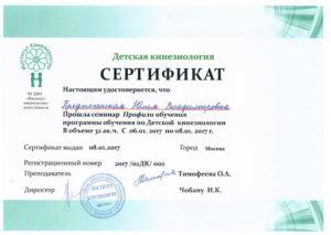 Сертификат_Профили обучения программы обучения по Детской кинезиологииs